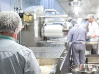 Thermaline information for the Food and Beverage Production industry